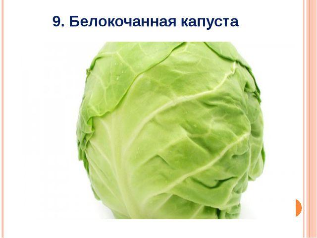 9. Белокочанная капуста