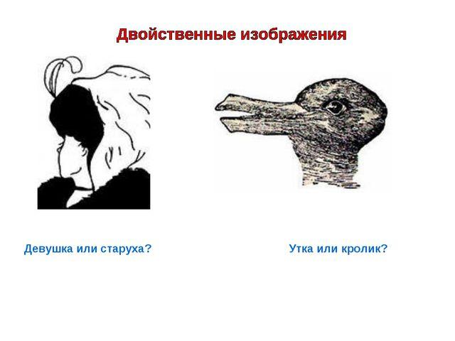 Девушка или старуха? Утка или кролик?