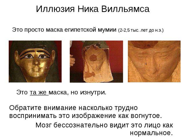 Иллюзия Ника Вилльямса Это просто маска египетской мумии (2-2,5 тыс. лет до н...