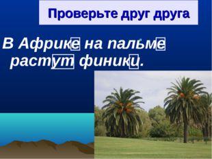 Проверьте друг друга В Африке на пальме растут финики.
