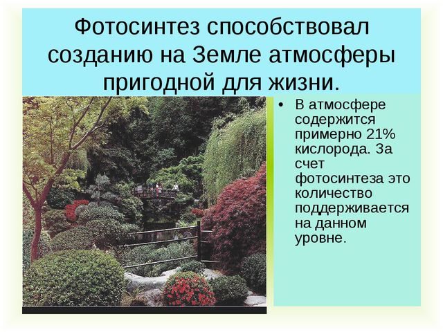 Фотосинтез способствовал созданию на Земле атмосферы пригодной для жизни. В а...