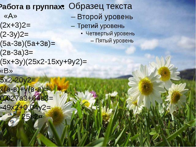 Работа в группах: «А» (2х+3)2= (2-3у)2= (5а-3в)(5а+3в)= (2в-3а)3= (5х+3у)(25...
