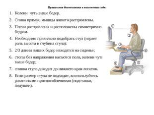 Правильная биомеханика в положении сидя: Колени чуть выше бедер. Спина прямая