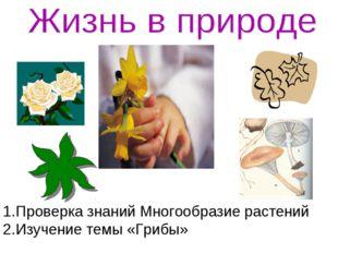 Проверка знаний Многообразие растений Изучение темы «Грибы»