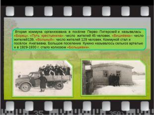 Вторая коммуна организована в посёлке Перво- Питерский и называлась «Борец».