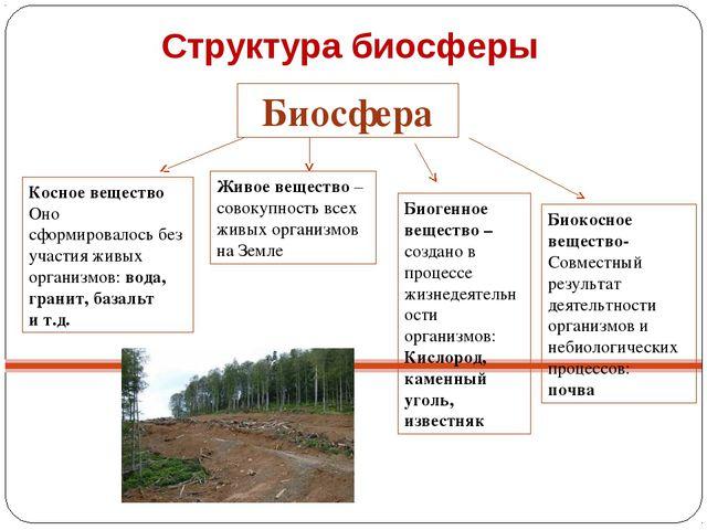 Презентация к уроку биологии на тему Биосфера класс  Структура биосферы Биосфера Косное вещество Оно сформировалось без участия жи