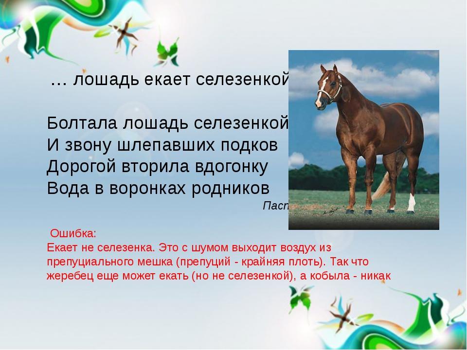 … лошадь екает селезенкой. Болтала лошадь селезенкой, И звону шлепавших под...
