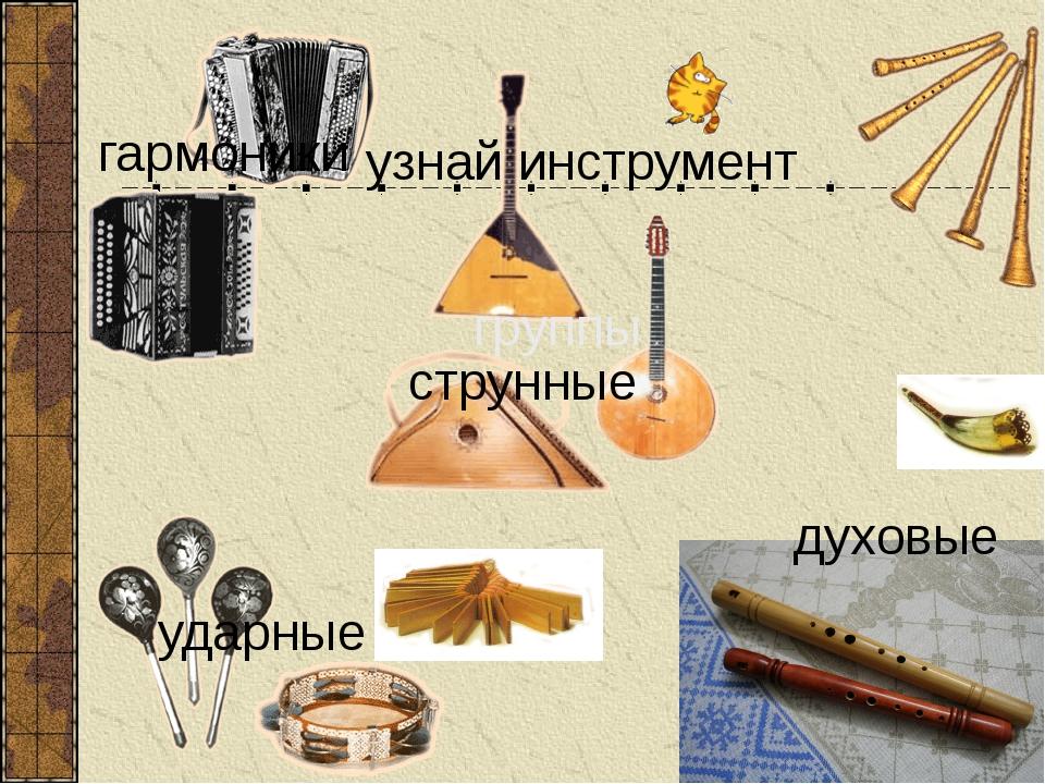 узнай инструмент группы струнные духовые ударные гармоники