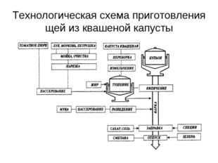 Технологическая схема приготовления щей из квашеной капусты