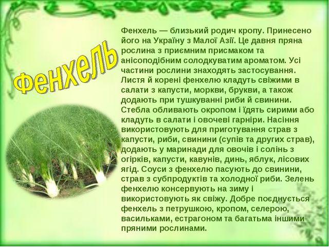 Фенхель — близький родич кропу. Принесено його на Україну з Малої Азії. Це да...