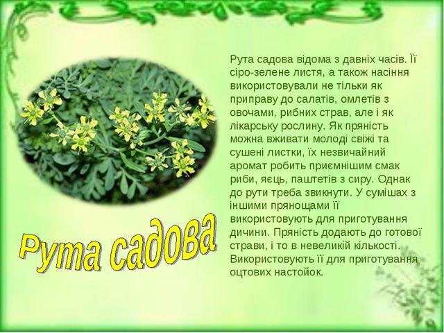 Рута садова відома з давніх часів. Її сіро-зелене листя, а також насіння вико...