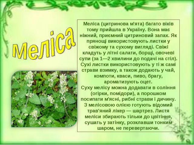 Меліса (цитринова м'ята)багато віків тому прийшла в Україну. Вона має ніжний...