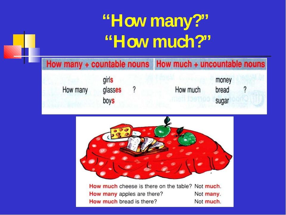 """""""How many?"""" """"How much?"""""""