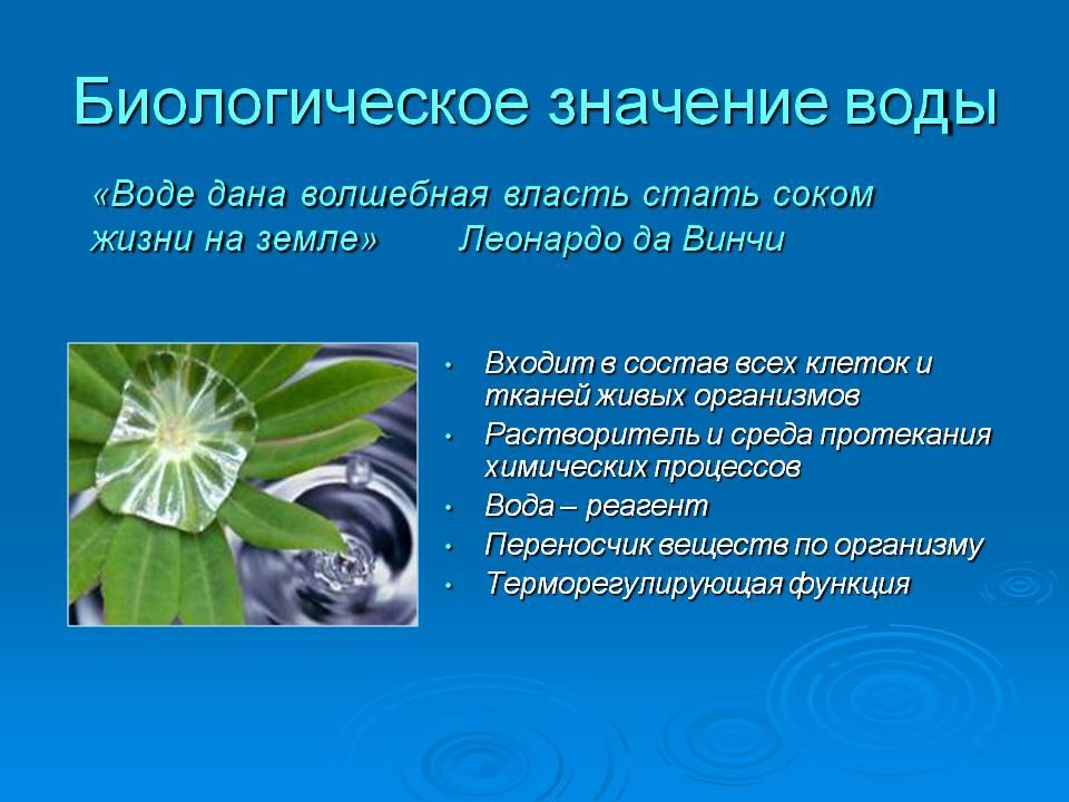 hello_html_m114aed30.jpg