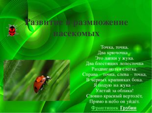 Развитие и размножение насекомых Точка, точка, Два крючочка – Это лапки у жук