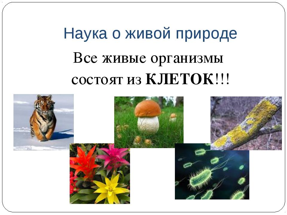 Наука о живой природе Все живые организмы состоят из КЛЕТОК!!!
