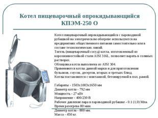 Котел пищеварочный опрокидывающийся КПЭМ-250 О Котел пищеварочный опрокидываю