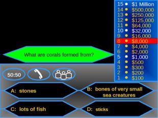 A: stones C: lots of fish B: bones of very small sea creatures D: sticks 50: