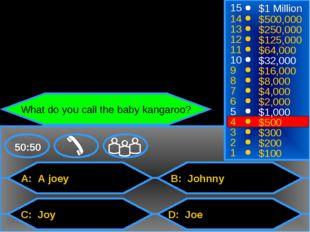 A: A joey C: Joy B: Johnny D: Joe 50:50 15 14 13 12 11 10 9 8 7 6 5 4 3 2 1 $