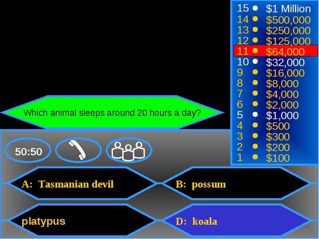 A: Tasmanian devil platypus B: possum D: koala 50:50 15 14 13 12 11 10 9 8 7...