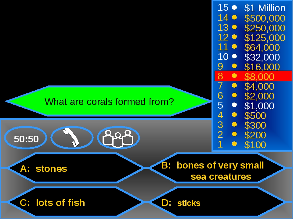 A: stones C: lots of fish B: bones of very small sea creatures D: sticks 50:...