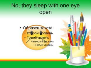 No, they sleep with one eye open