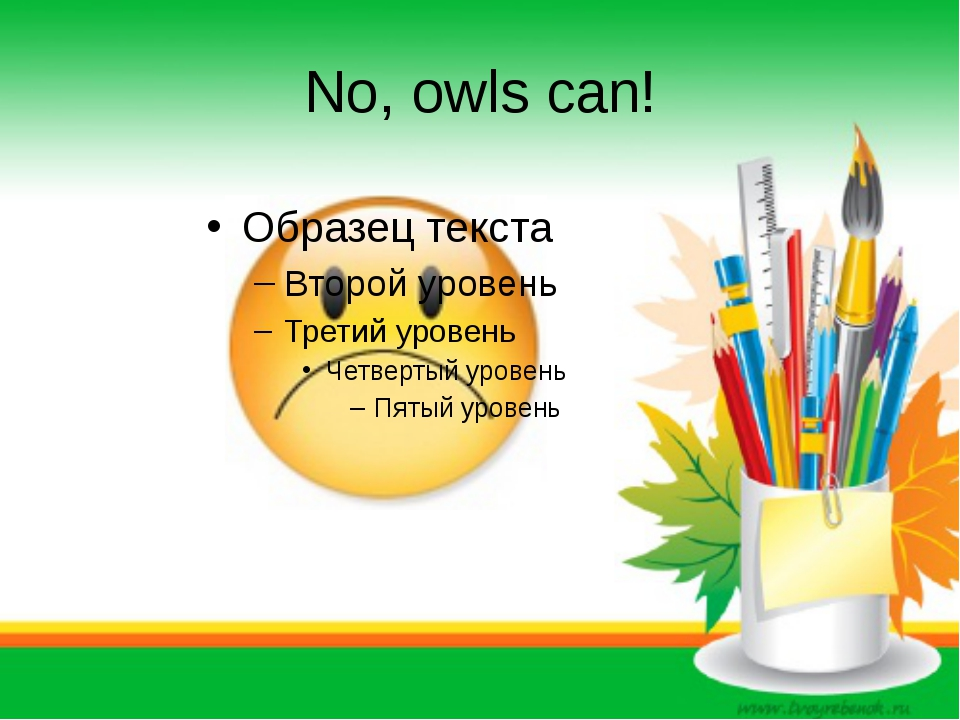 No, owls can!