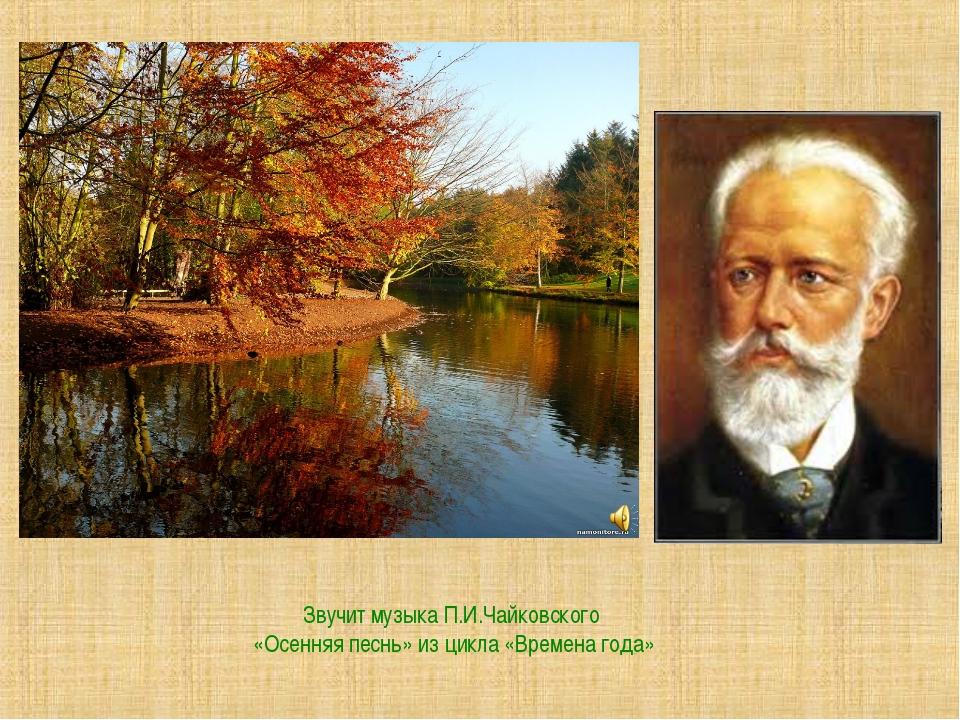 Звучит музыка П.И.Чайковского «Осенняя песнь» из цикла «Времена года»