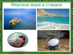Мертвое море в стакане