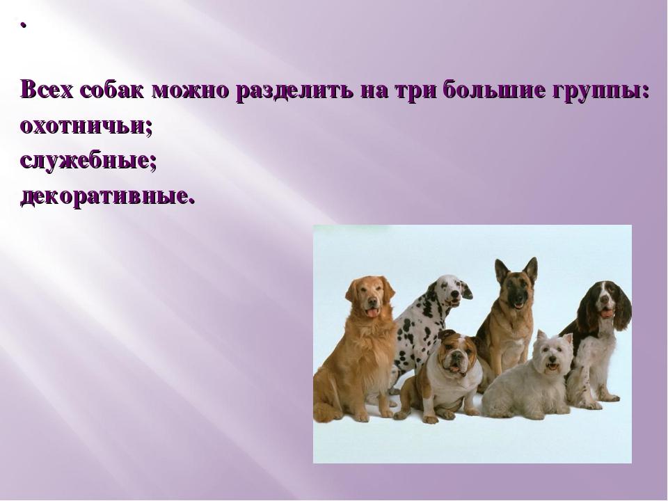 . Всех собак можно разделить на три большие группы: охотничьи; служебные; дек...