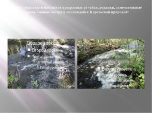 Рядом с водопадом находятся прекрасные ручейки, родники, замечательные березы