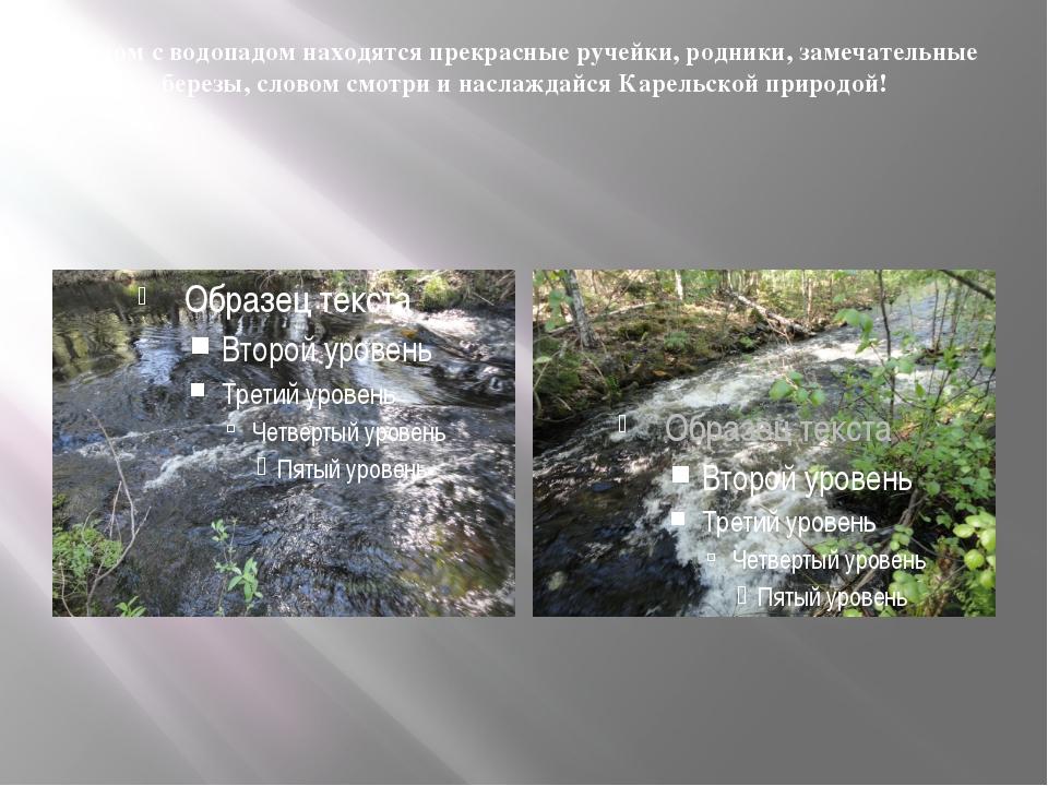 Рядом с водопадом находятся прекрасные ручейки, родники, замечательные березы...