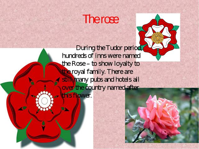 The rose During the Tudor period, hundreds of inns were named the Rose – to s...