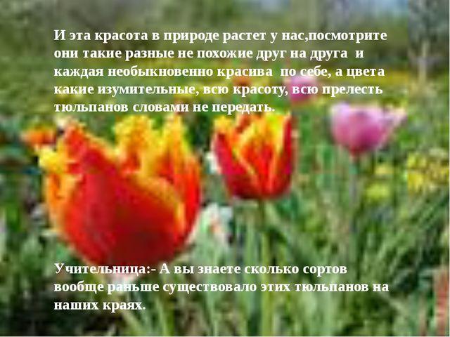 И эта красота в природе растет у нас,посмотрите они такие разные не похожие д...
