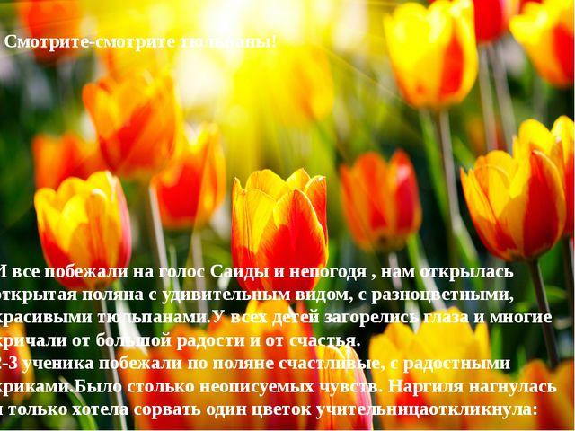 - Смотрите-смотрите тюльпаны! И все побежали на голос Саиды и непогодя , нам...