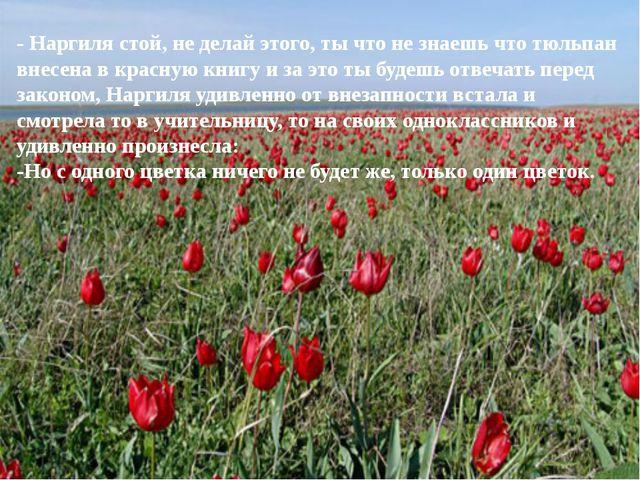 - Наргиля стой, не делай этого, ты что не знаешь что тюльпан внесена в красну...