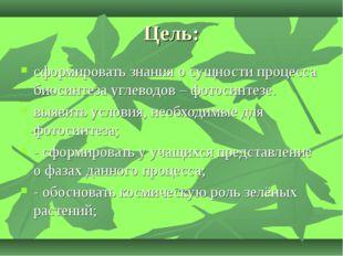 Цель: сформировать знания о сущности процесса биосинтеза углеводов – фотосинт