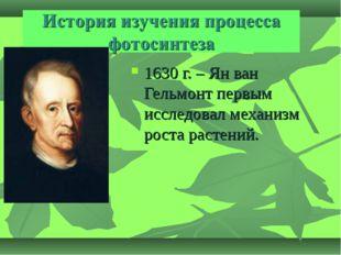 1630 г. – Ян ван Гельмонт первым исследовал механизм роста растений.