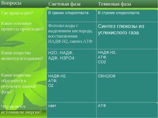В гранах хлоропласта Фотолиз воды с выделением кислорода, восстановление НАДФ