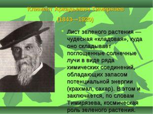 Климент Аркадьевич Тимирязев (1843—1920) Лист зеленого растения — чудесная «к