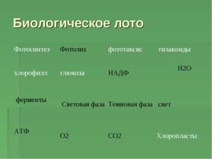 Биологическое лото ФотосинтезФотолизфототаксис тилакоиды хлорофилл глюко