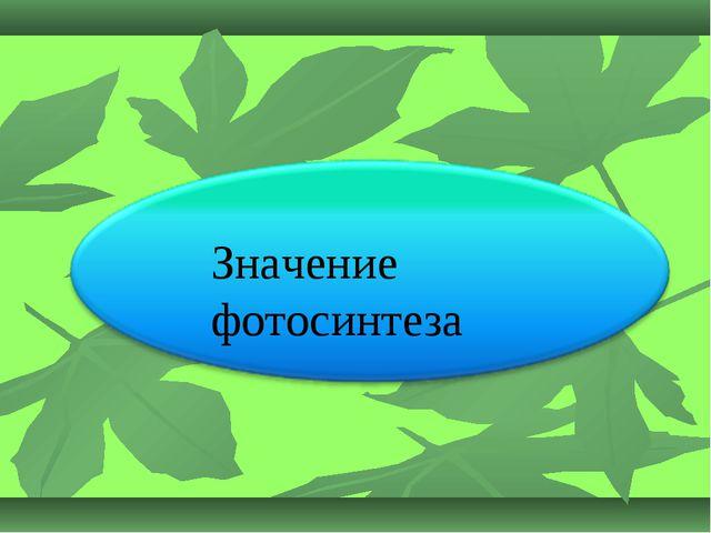 Значение фотосинтеза