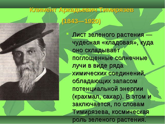 Климент Аркадьевич Тимирязев (1843—1920) Лист зеленого растения — чудесная «к...