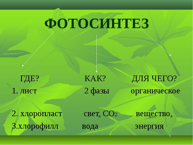 ФОТОСИНТЕЗ ГДЕ? КАК? ДЛЯ ЧЕГО? 1. лист 2 фазы органическое 2. хлоропласт свет...