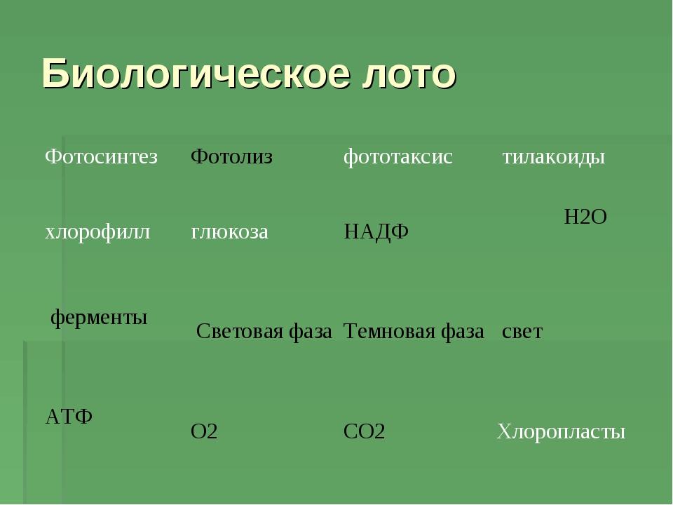 Биологическое лото ФотосинтезФотолизфототаксис тилакоиды хлорофилл глюко...
