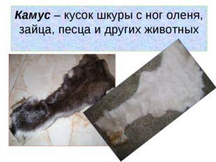 Камус – кусок шкуры с ног оленя, зайца, песца и других животных