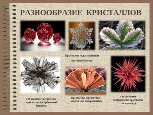 РАЗНООБРАЗИЕ КРИСТАЛЛОВ 100-кратное увеличение кристалла аскорбиновой кислоты