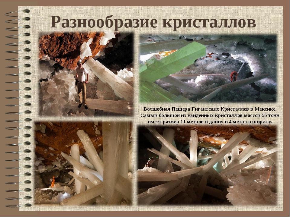 Разнообразие кристаллов Волшебная Пещера Гигантских Кристаллов в Мексике. Сам...
