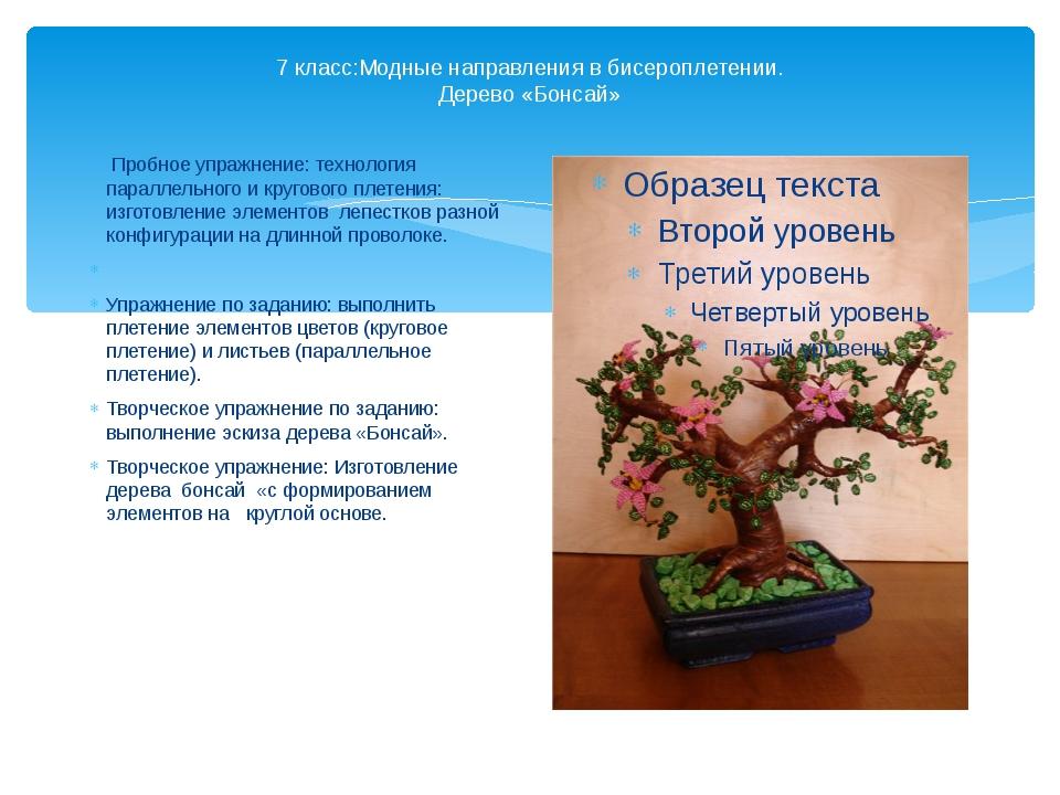 7 класс:Модные направления в бисероплетении. Дерево «Бонсай» Пробное упражнен...