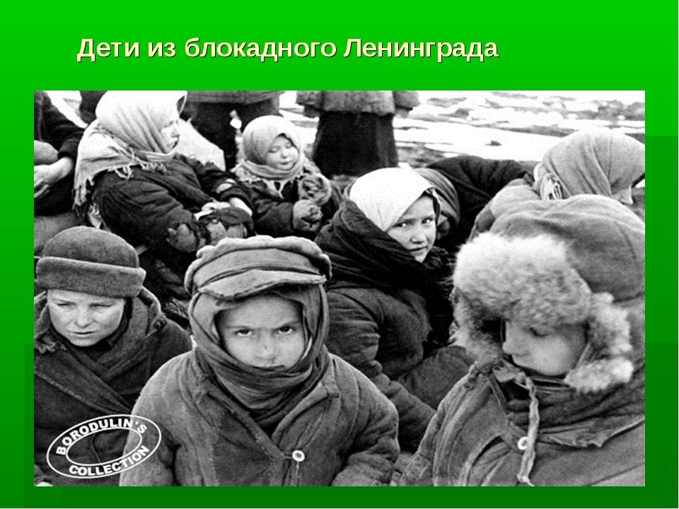 Дети из блокадного Ленинграда